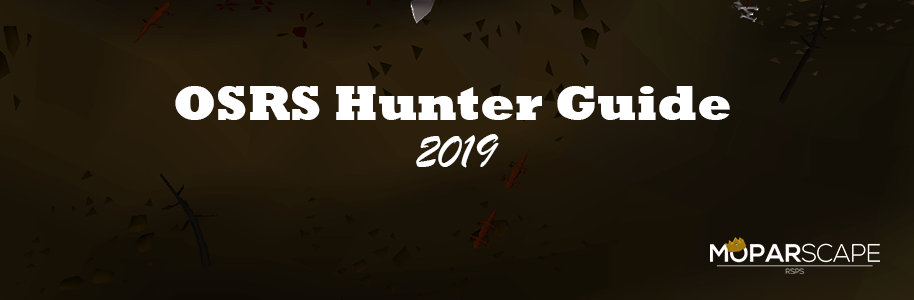 OSRS Hunter Guide